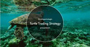 Läs mer om artikeln Turtle Trading Strategy